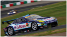 2009 SUPER GT SERIES(GT300)